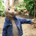 Králik Peter /  Peter Rabbit